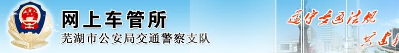 芜湖网上车管所