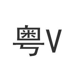 粤v是哪里的车牌