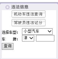 天津交通违章查询